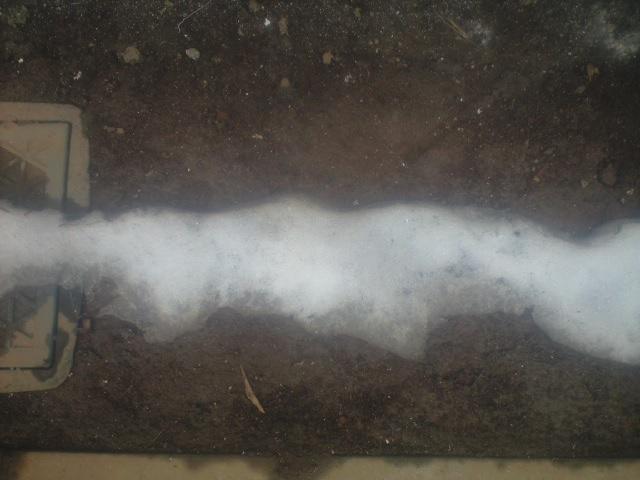 がんばる雪