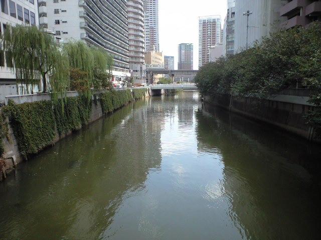 五反田大橋から目黒川