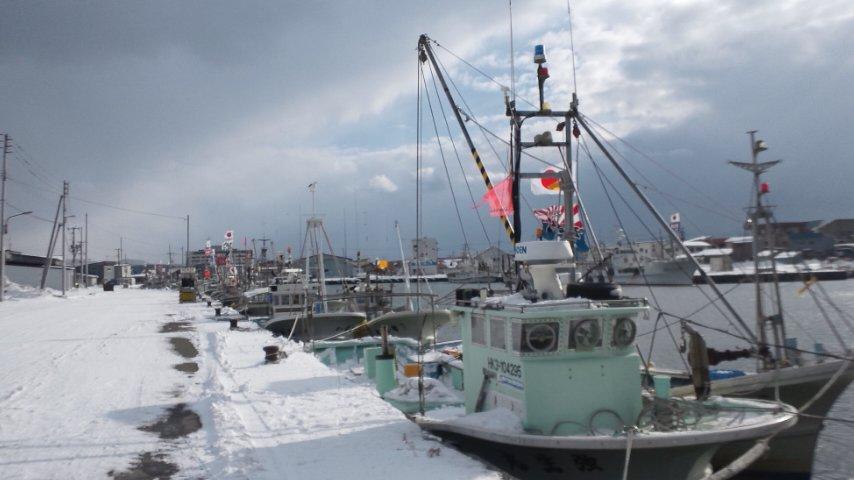 羽幌港にて