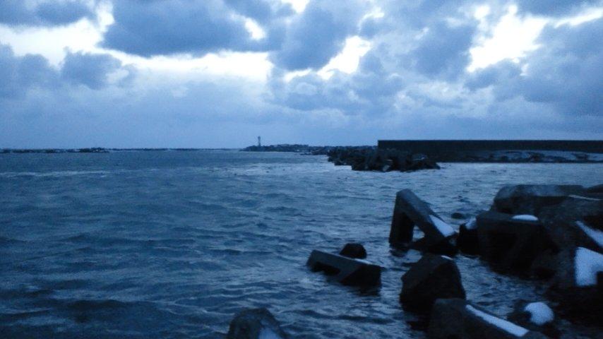 抜海のゴマフアザラシ観測所