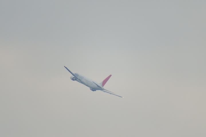 Dscf1102a